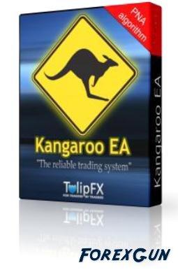 Форекс советник Kangaroo EA - трейдерам работающим по усреднению!