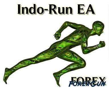 """Forex советник """"Indo Run ver 1.5"""" - полноценный торговый скальпер!"""
